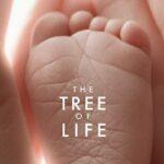 Film The Tree of Life Enneagram Type 1